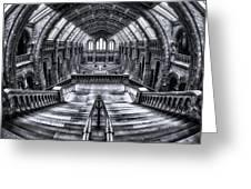 Harry Potter Meets Escher And Darwin. Greeting Card