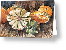 Harvest Gourds Greeting Card