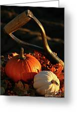 Harvesting For Thanksgiving Greeting Card