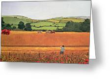Harvesting In The Cotswolds Greeting Card