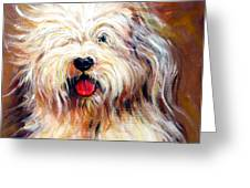 Harvey The Sheepdog Greeting Card