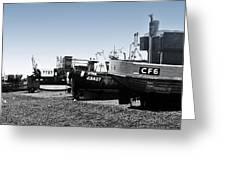 Hastings Fleet Greeting Card by Sharon Lisa Clarke