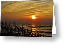 Hatteras Island Sunrise 1 7/31 Greeting Card