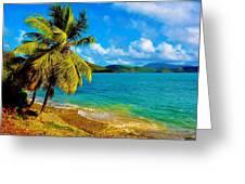 Haulover Bay Usvi Greeting Card