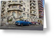 Havana Beauty Greeting Card