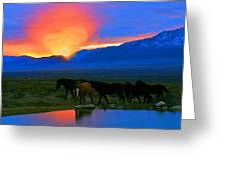 Have A Heart For Wild Horses  Greeting Card