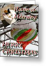 Have A Meowey Merry Christmas Greeting Card