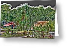 Hawaii Plantation Greeting Card