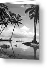 Hawaii Tropical Scene Greeting Card