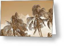 Hawaiian Breeze Greeting Card