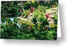 Hawaiian Cultural Garden Honolulu Airport Greeting Card