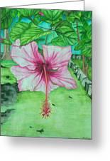 Hawaiian Healing Greeting Card