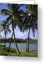 Hawaiian Paradise Greeting Card
