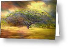 Hawaiian Tree Greeting Card