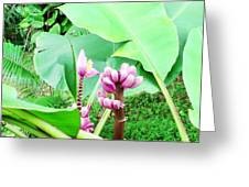 Hawaiiana 22 Greeting Card