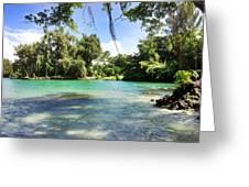 Hawaiian Landscape 4 Greeting Card