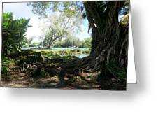 Hawaiian Landscape 3 Greeting Card