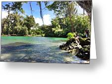Hawaiian Landscape Greeting Card