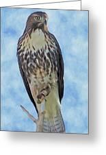 Hawk By Frank Lee Hawkins Greeting Card