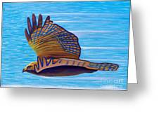 Hawk Speed Greeting Card