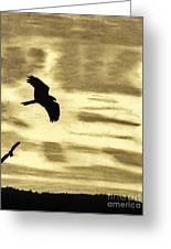 Hawks - At - Sunset Greeting Card