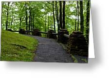 Hawk's Nest Path Greeting Card
