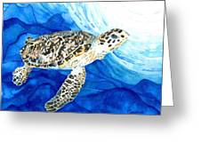 Hawksbill Sea Turtle 2 Greeting Card