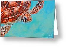 Green Turtle Greeting Card