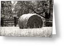 Hay Bale In A Farm Field Greeting Card