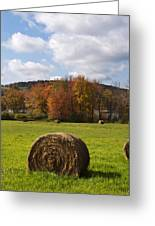 Hay Bale In Country Field Greeting Card