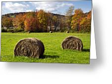 Hay Bales And Fall Colors Greeting Card