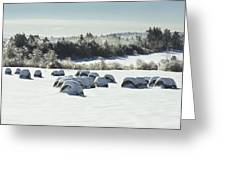 Hay Bales Covered With Snow And Ice In Maine Greeting Card