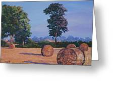 Hay-bales In Evening Light Greeting Card