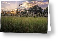 Hay Field Sunset Greeting Card