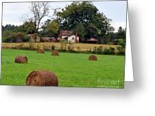 Hay From North Carolina Greeting Card