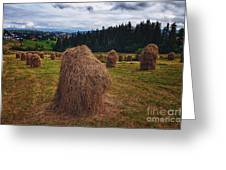 Hay In Stacks In Tatra Mountains Poland Greeting Card