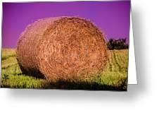 Hay Roll Greeting Card