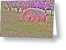 Hay Stack Greeting Card