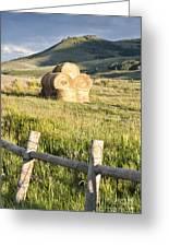 Hay Stack Greeting Card