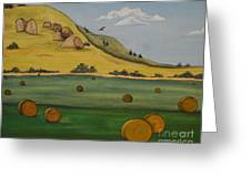 Haybales Greeting Card by Cassandra Barnhart