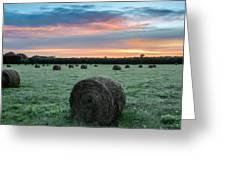 Hayfield Sunrise 3d21735 Greeting Card