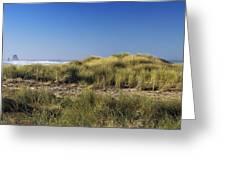 Haystack And Sea Grass Greeting Card
