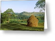 Haystack At The Hillside, Transylvania Greeting Card