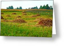 Haystacks In Field Greeting Card