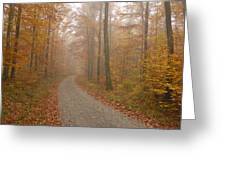 Hazy Forest In Autumn Greeting Card by Matthias Hauser