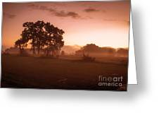 Hazy Morn Greeting Card