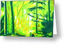 Hazy Sunny Forest Greeting Card