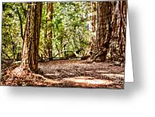 hd 379 hdr - Henry Cowell 2 Greeting Card