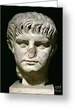 Head Of Nero Greeting Card