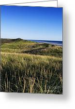 Head Of The Meadow Beach Greeting Card